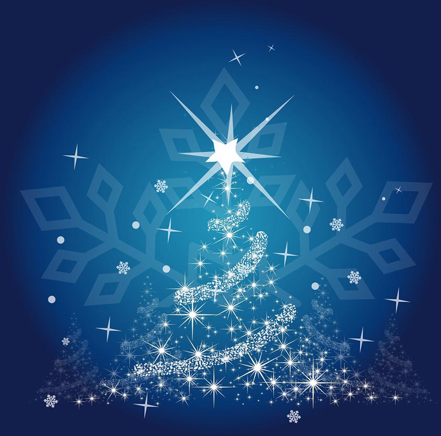 募集>クリスマスイルミネーション点灯式のボランティア(宮城県東松島市)